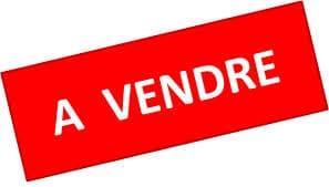 presente de indicativo en francés